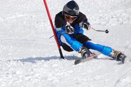 Ski og skityper Image